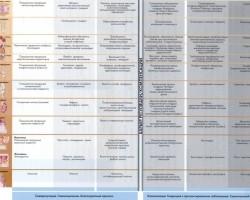 Нижняя часть таблицы(выведение токсинов)